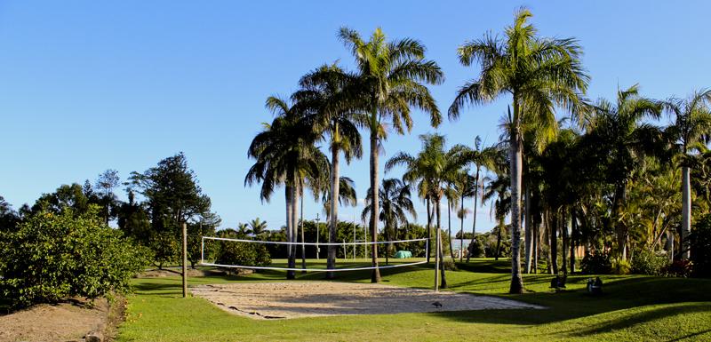 beach volleyball court with palm trees on Sunshine Coast, Queensland, Australia