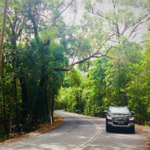 Robin Esrock's Top 5 Port Douglas Bucket List