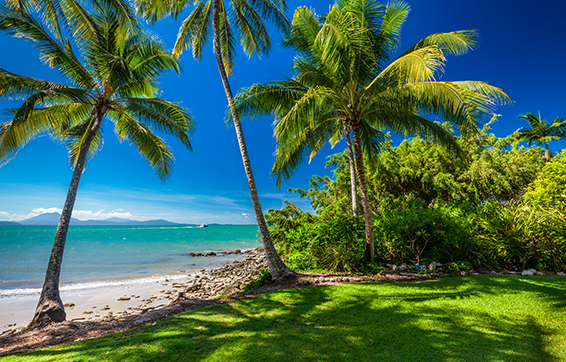 tourists on summer holiday lying in shade of palm trees on beach at Port Douglas resorts hotel in Queensland Australia