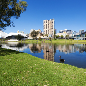 There are so many things to see and do in Adelaide