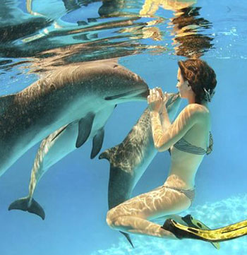 woman swimming with dolphins in port stephens new south wales